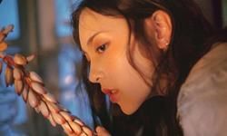苏珊米勒2019年巨蟹座运势完整版